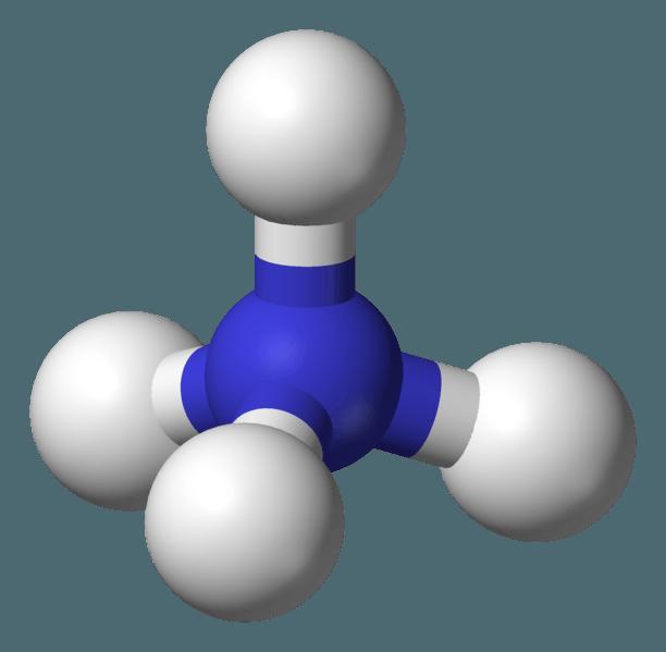 NH4 (ammonium)